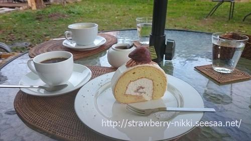 strawberry-nikki.seesaa.netDSC_1876菓歩菓歩.JPG