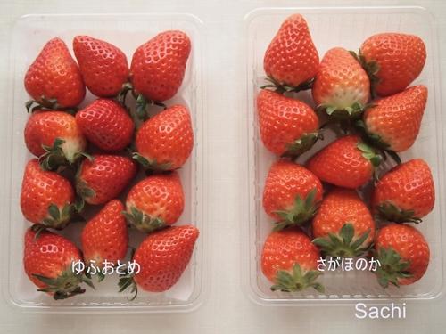 strawberryゆふおとめ さがほのか大分県産いちご.JPG
