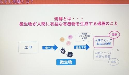 strawberryIMG_6057活かそう発酵パワー.JPG