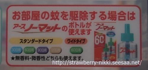 strawberryP3132362ヘルパータスケ.JPG
