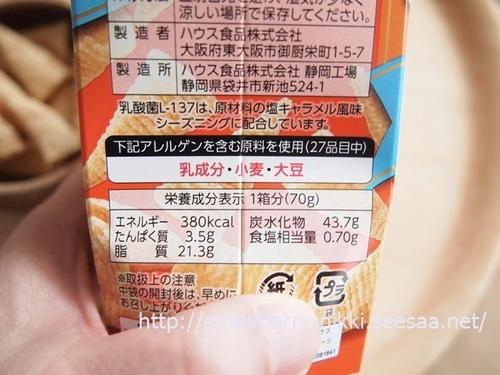 strawberryP3282477とんがりコーン.JPG