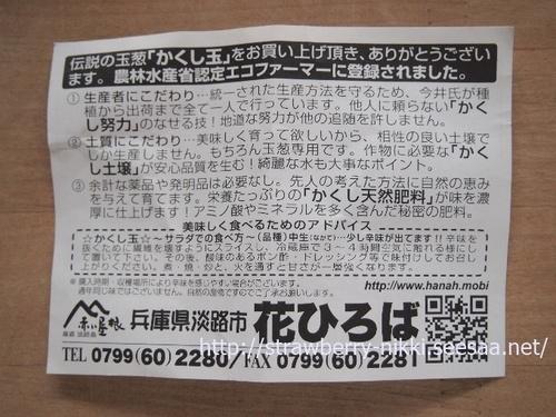 strawberryP8311140淡路玉ねぎ かくしだま.JPG